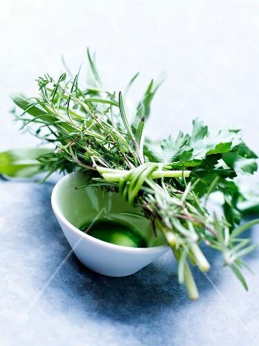 Bunch of fresh herbs