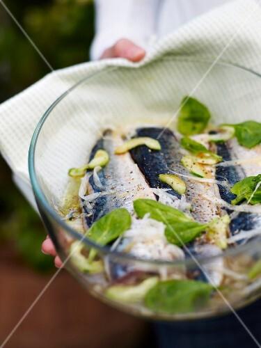 Japanese-style grilled mackerels