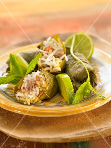 Warak inab, vine leaves stuffed with veal and rice