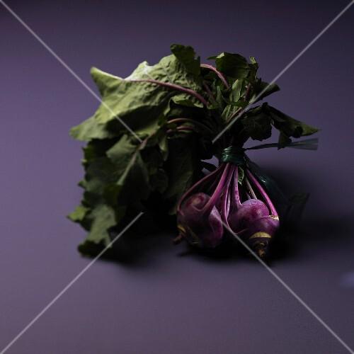 Celery roots