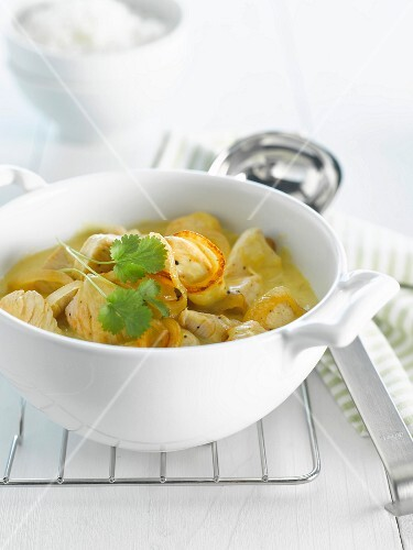 Turkey and onion curry