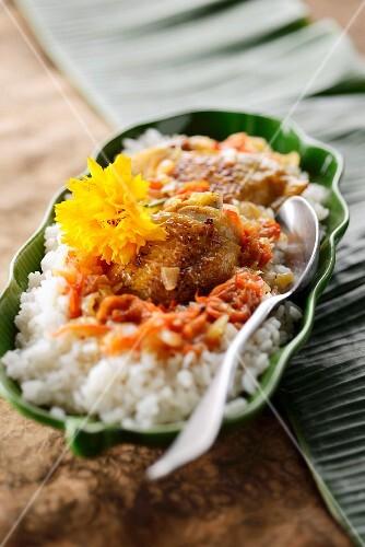 Poulet Yassa (Schmorhuhn mit Zitrone und Reis, Afrika)