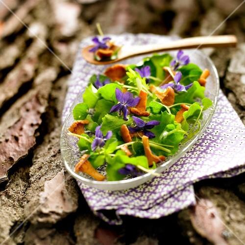 Chanterelle and violet salad