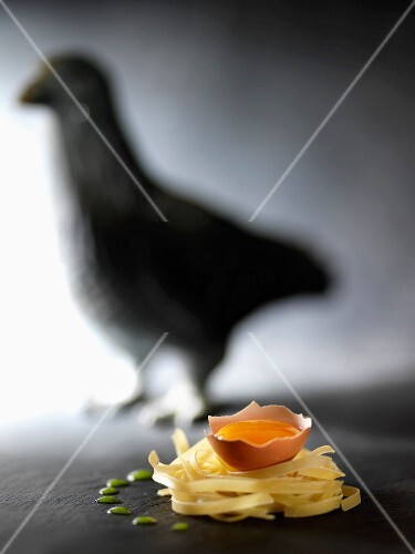 Egg yolk on a nest of tagliatelles,shadow of a hen