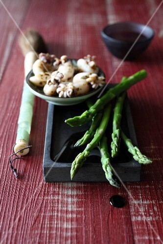 Green asparagus,small squid with their ink and a Chinese painting brush