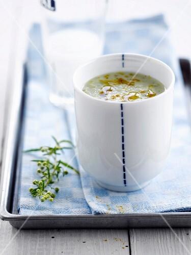 Cream of zucchini,fennel and Pastis soup