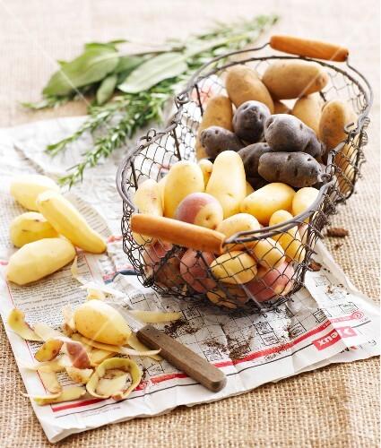 Assortment of potatoes