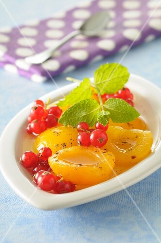 Preserved apricots with redcurrants