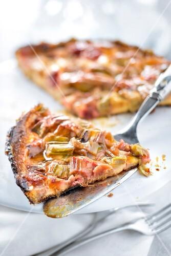 Slice of rhubarb tart