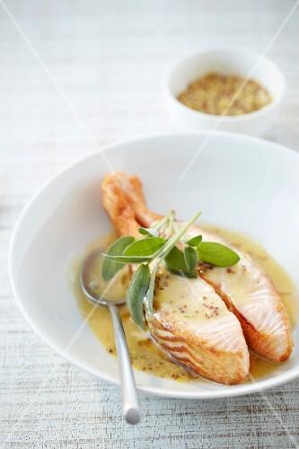 Salmon in seedy mustard sauce