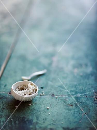 Small bowl of coarse salt