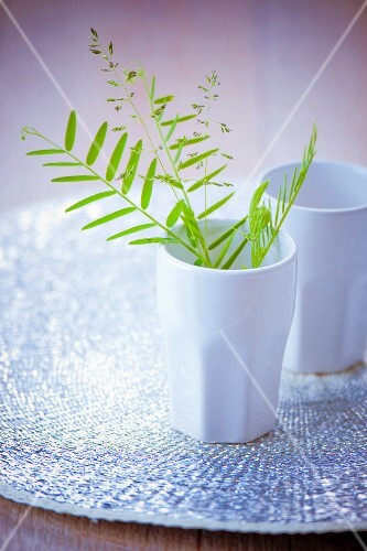 Green sprigs in a china cup