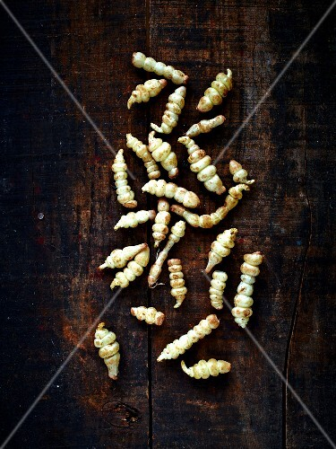 Still life with Chinese artichokes