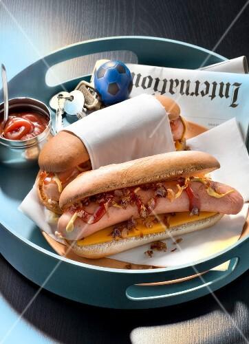 USA : Hot-dog with fried onions