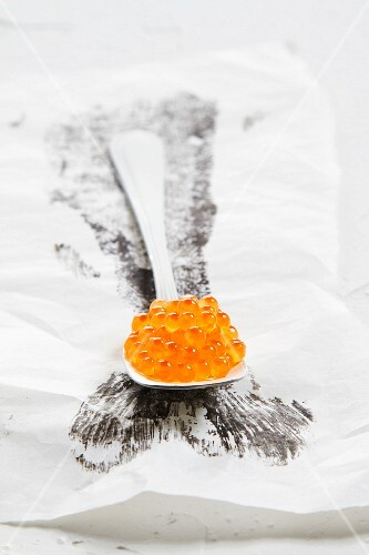 Spoonful of salmon roe