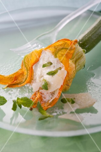 Zucchini flower with cream cheese,parmesan and mint