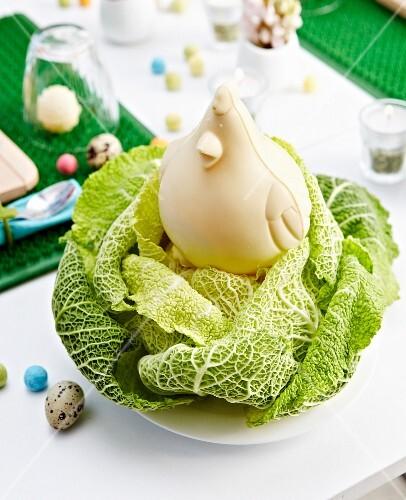 White chocolate hem in a cabbage nest