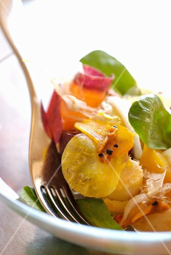 Colourful salad with sea urchins