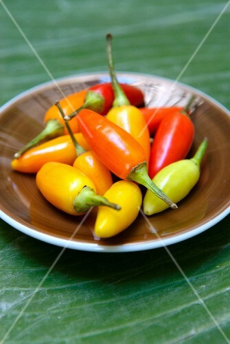 Dish of fresh colored hot peppers