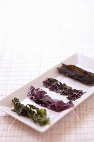 Varieties of seaweed