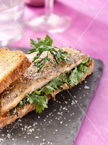 Sea bream fillet and fresh coriander on toast