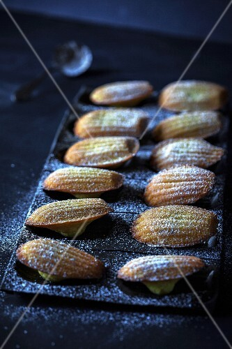 Madeleines on a baking tray sprinkled with icing sugar