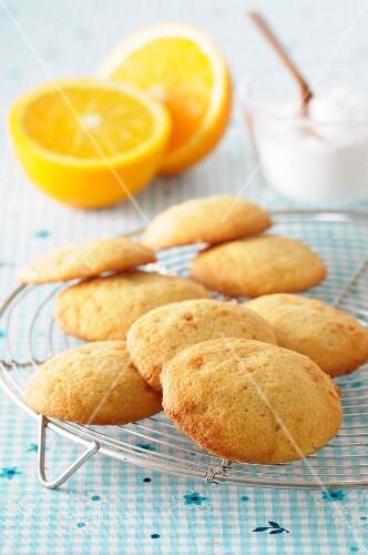 Palets à l'orange (French orange biscuits)