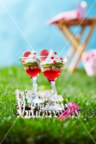 Redcurrant and berry jelly,kiwi,whipped cream and macaroon desserts in the grass outdoors