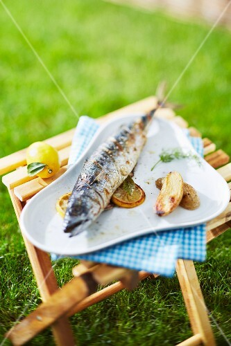 Grilled sea bass outdoors