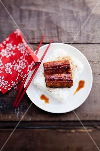 Unagidon (traditional rice dish with eel, Japan)
