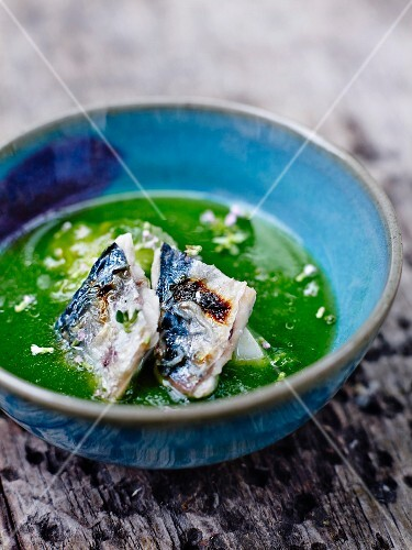 Grilled mackerels in watercress broth with garlic flowers