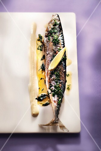Grilled mackerel with parsley, oil and lemon with mustard sauce