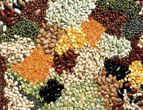 Large Assortment of Beans; Lentils and Peas