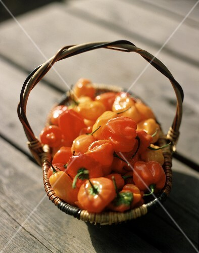 Red and yellow peppers in basket