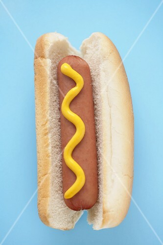Hot Dog with Mustard on a Bun, Blue Background