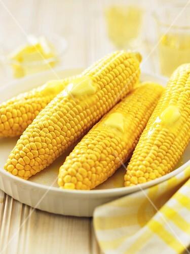 Butter Melting on Four Ears of Corn