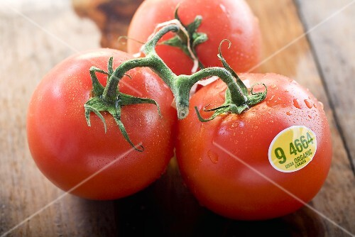 Three Organic Tomatoes on the Vine