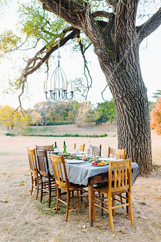 Empty dinner table in field