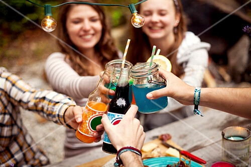 Friends toasting with soda at picnic table
