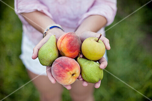 Close up of woman holding fresh picked fruit